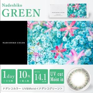 ナデシコカラー UV & MOIST 10枚 ナデシコグリーン